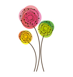 color rounds flowers icon vector image