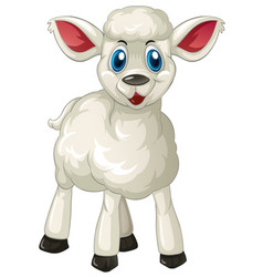 White lamb standing alone vector