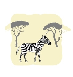 Zebra between savanna trees vector