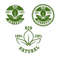 Natural bio green labels set vector