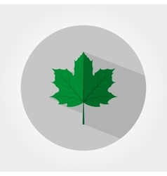 Green maple leaf icon vector