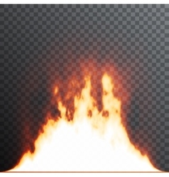 Realistic fire flames on transparent background vector