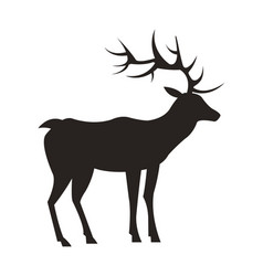Medium-sized adult male deer colorless black icon vector