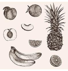 Sketch banana pineapple peach orange hand drawn vector