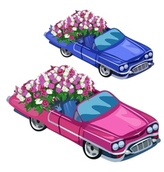 White and blue cabriolet with bouquet of roses vector image