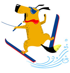 Dog on water skiing the pet is engaged in summer vector