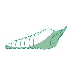 Mollusk sea life design vector