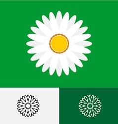 Camomile logo vector image