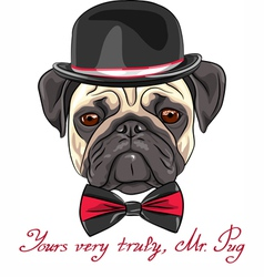 Hipster serious dog fawn pug vector