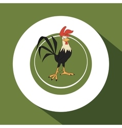 Animal design rooster icon isolated vector