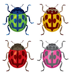 brightly colored beetles vector image