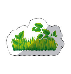 green grass with leaves icon vector image
