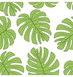 Leaf of monstera plant vector