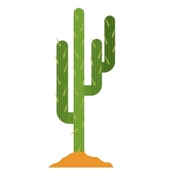 Cactus plant with earth design vector image