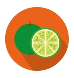 Colorful circular shape with lemon fruit and slice vector