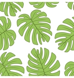 Leaf of monstera plant vector