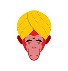 Monkey in turban monkey yoga head of red monkeys vector