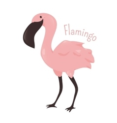 Flamingo isolated child fun pattern icon vector