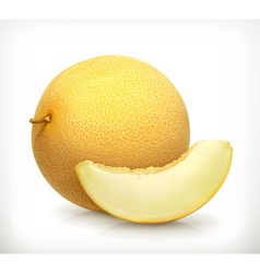 Melon icon vector image vector image