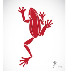 Image of a frog vector