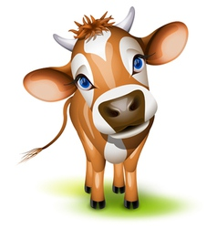 jersey cow vector image