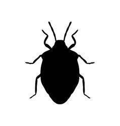 Shield bug palomena prasina sketch of shield bug vector