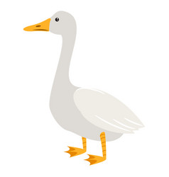 cute cartoon goose isolated vector image vector image
