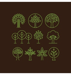 Organic tree icons vector