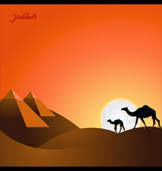 egypt sunset vector image