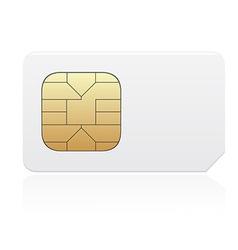 sim card 01 vector image