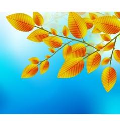 Autumn leaf background vector image