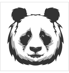 Portrait of panda cute attractive face bears vector