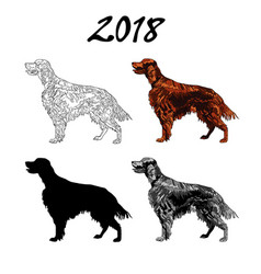 an image of a dog breed of vector image