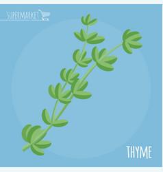 Thyme flat design icon vector