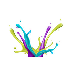 color water splash on white background vector image