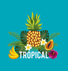 Nice and exotic fruits flowers and plant vector