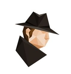 Abstract origami spy character vector