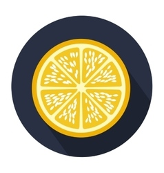 Dark blue circular shape with slice orange fruit vector