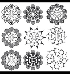 floral decorative geometric design vector image vector image