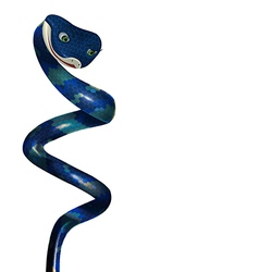 Blue snake on a white background vector