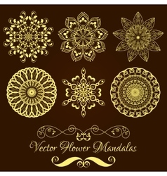 Set from gold floral mandala over dark vector
