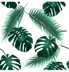 tropical palm leaves jungle thickets seamless vector image