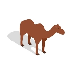 Camel icon in isometric 3d style vector