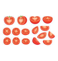 Tomatoes collection isolated vector