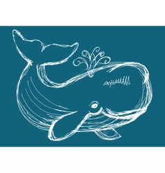 Whale animal vector
