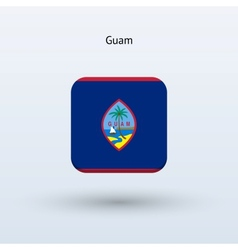 Guam flag icon vector