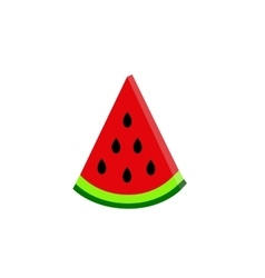 Water-melon on white background flat vector