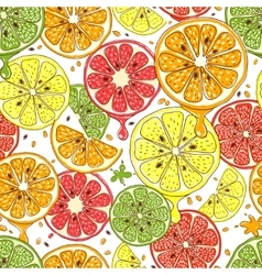 Citrus fruits seamless background vector
