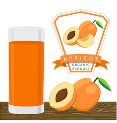 the apricot vector image vector image
