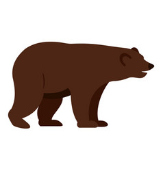 grizzly bear icon isolated vector image